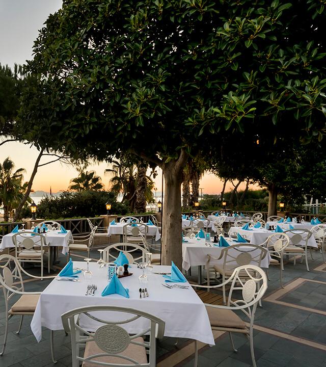 Alibey_Resort_Sorgun_Gurme_Lezzetler_Derya_Balık_A_la_Carte_1